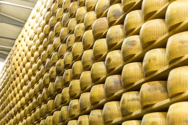 Fábrica de quesos parmigiano con el queso envejecido