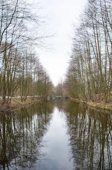 Un fabuloso puente sobre el río en el bosque.