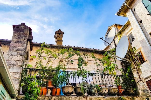 Fachada del antiguo palacio y flores.