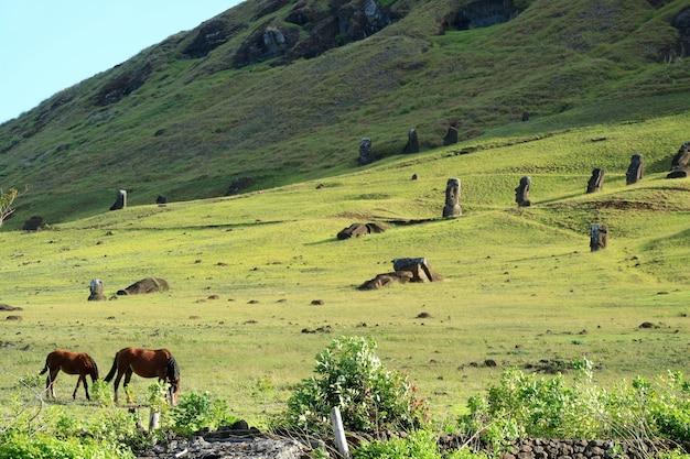 La falda del volcán rano raraku donde se hicieron las estatuas moai en la isla de pascua, chile