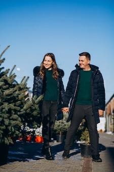 Familia joven que elige el árbol de navidad en un invernadero