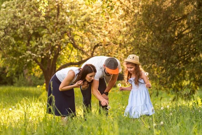Familia que mira la flor del diente de león en jardín