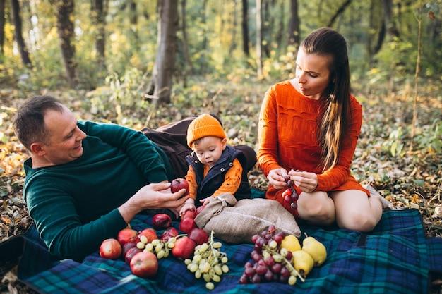 Familia con su pequeño hijo haciendo picnic en el parque