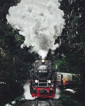 Famoso tren turístico en suiza, el glacier express en invierno