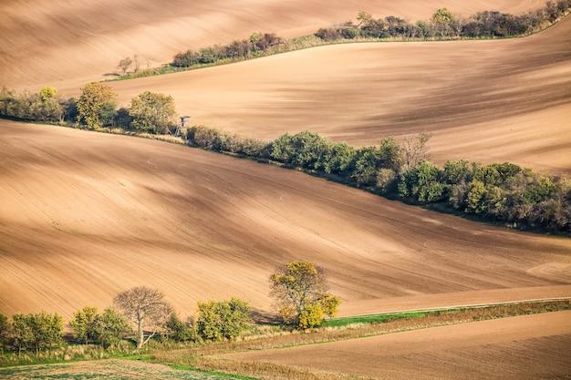 Famosos campos moravos en la república checa,