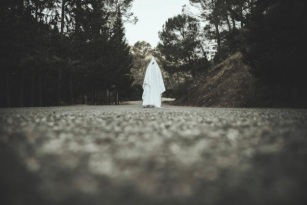 Fantasma yendo por el camino rural