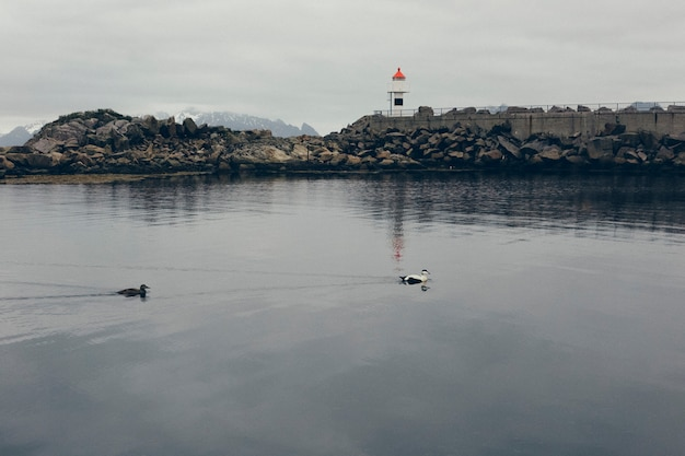 Faro en las aguas salvajes y remotas del atlántico norte del mar, entre las rocas de un puerto nórdico.
