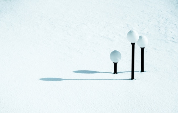 Farolas cubiertas por la nieve en invierno