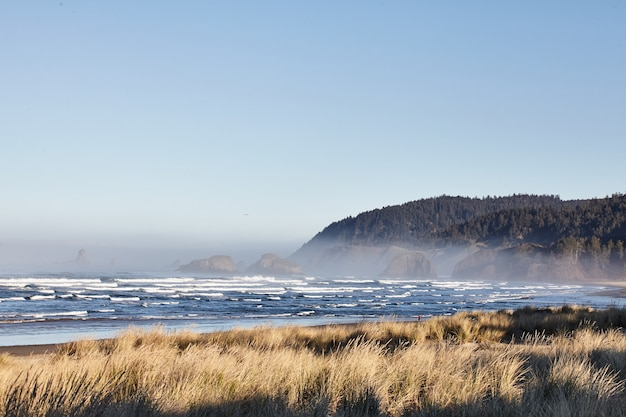Fascinante paisaje de olas del océano en cannon beach, oregon, ee.