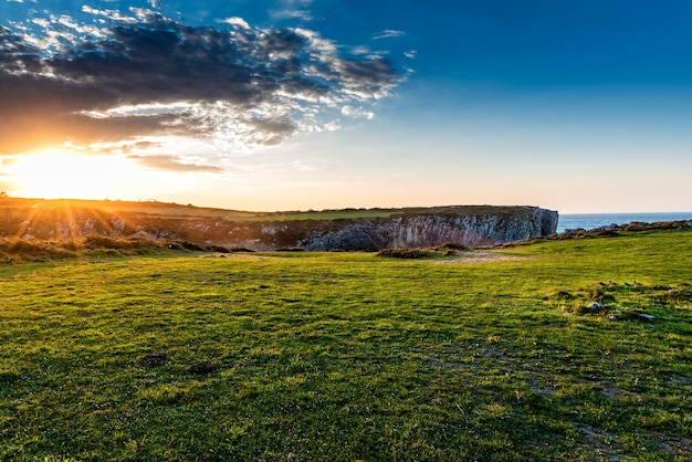 Fascinante vista de los campos cerca del océano durante el amanecer