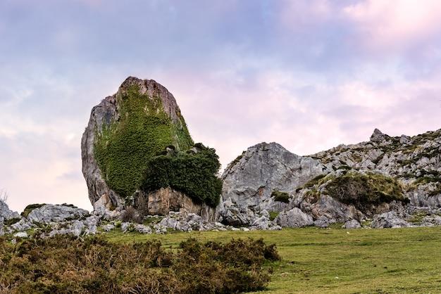 Fascinante vista de las montañas rocosas cubiertas de verde en el campo en un día nublado