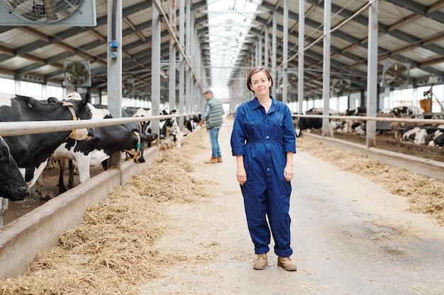 Feliz joven exitoso personal de la granja lechera en uniforme de pie en el pasillo entre dos largas filas de vacas lecheras durante el trabajo