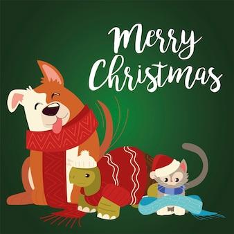 Feliz navidad con lindo perro, tortuga y gato con bufandas