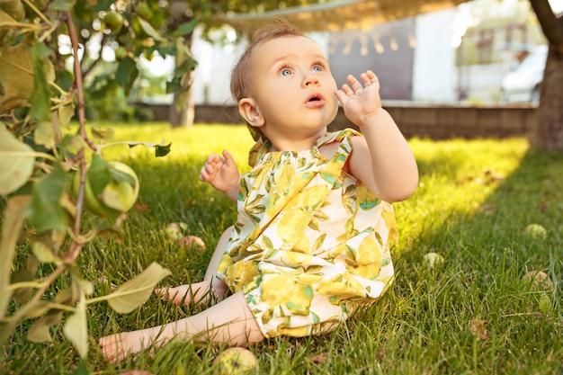 La feliz niña durante la recolección de manzanas en un jardín al aire libre