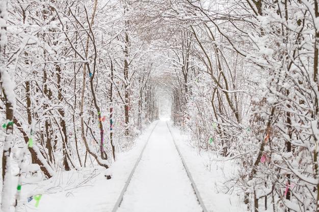 Un ferrocarril en el túnel del bosque de invierno del amor.