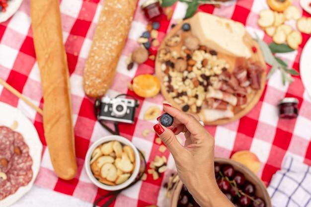Fiesta de picnic al aire libre de verano