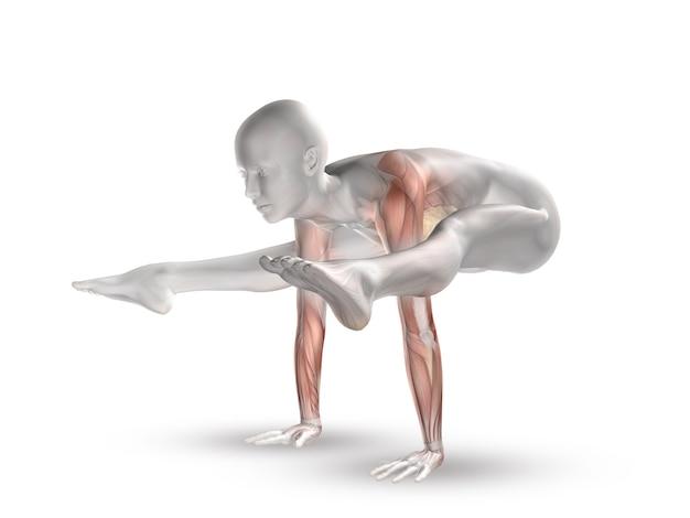 Figura femenina 3d con mapa muscular en posición de yoga.