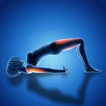 Figura femenina 3d en pose de puente con los músculos utilizados resaltados