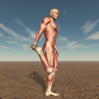 Figura masculina 3d con mapa muscular en paisaje árido