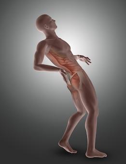Figura masculina en 3d con los músculos de la espalda resaltados.