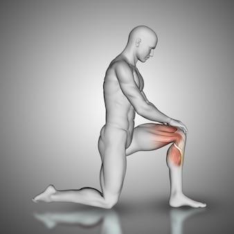 Figura masculina 3d con músculos de la rodilla resaltados