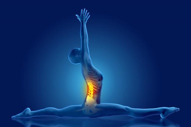 Figura médica femenina 3d en posición de divisiones de yoga con la columna vertebral resaltada