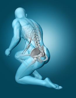 Figura médica masculina 3d con la columna vertebral destacada
