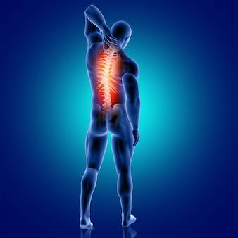 Figura médica masculina 3d con columna vertebral resaltada
