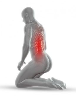 Figura médica masculina 3d con esqueleto en posición de rodillas