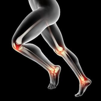 Figura médica masculina en 3d con rodillas y tobillos resaltados.
