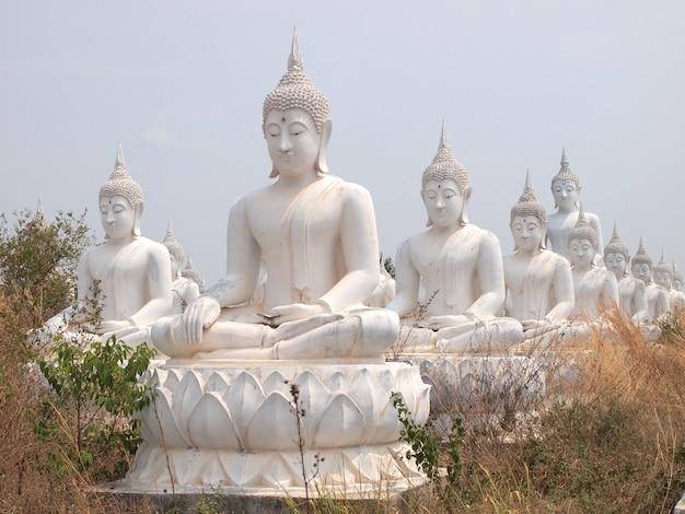 Fila de la estatua blanca de buda en el campo para la adoración.