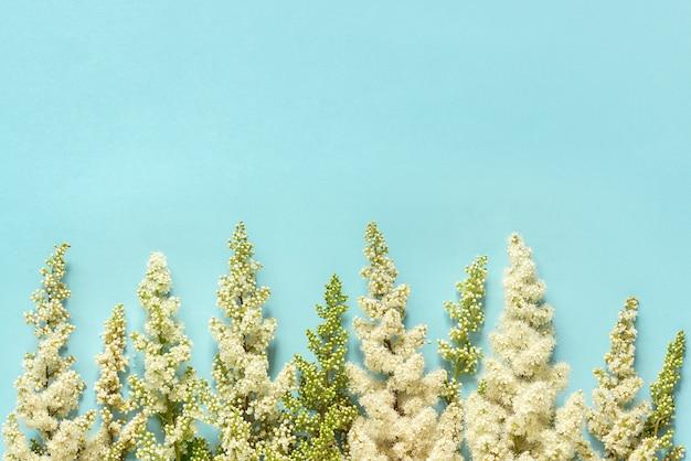 Fila floreciente ramita flores blancas sobre fondo de papel azul