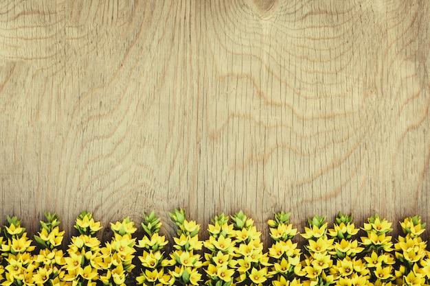 Fila de flores de campo amarillas en madera