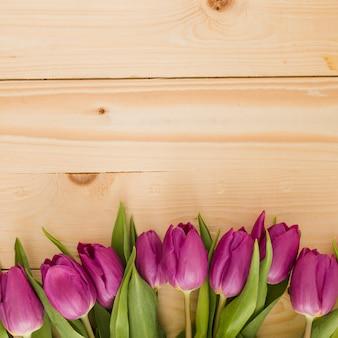 Fila de tulipanes sobre fondo de madera