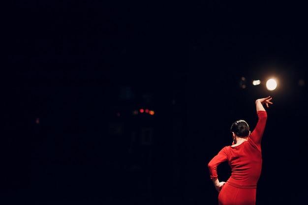Flamenco. actuación en el escenario.