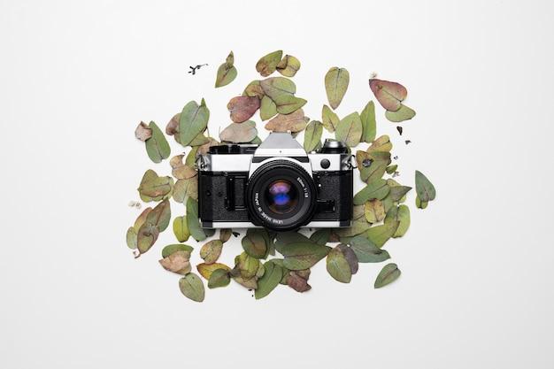 Flat lay de cámara sobre hojas