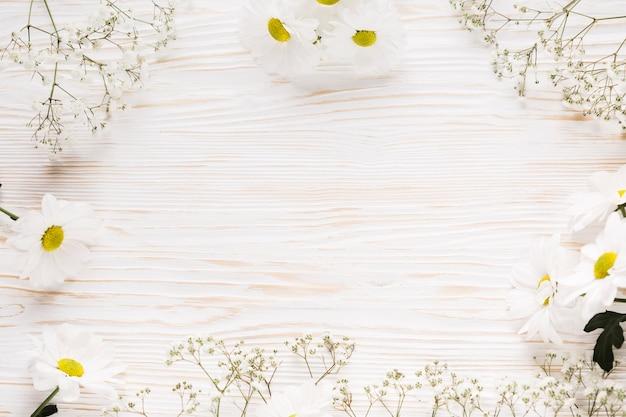 Flat lay elegante marco floral
