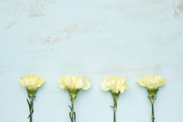 Flat lay de flores con copyspace