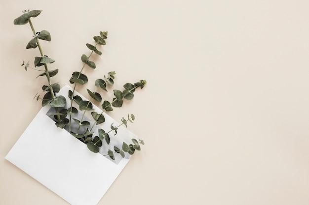 Flat lay de hojas con copyspace