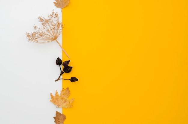 Flat lay hojas de otoño con copy space
