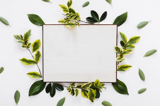Flat lay de plantilla de tarjeta de papel con hojas