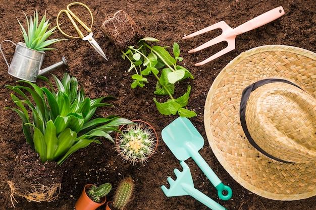 Flat lay de varios objetos de jardín