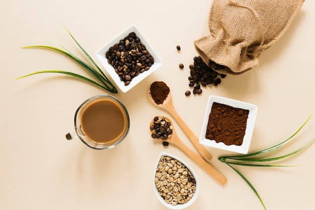Flay lay de café y bolsa de café