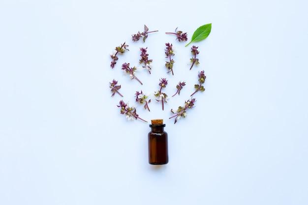 Flor de albahaca dulce y dejar con una botella de gota de hierba de aceite esencial sobre fondo blanco