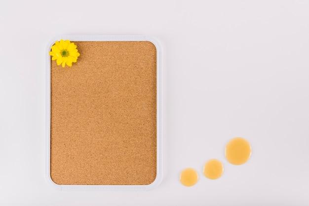 Flor amarilla en marco de corcho cerca de gotas de miel sobre fondo blanco