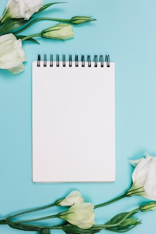 Flor blanca del eustoma con la libreta espiral en blanco en fondo azul