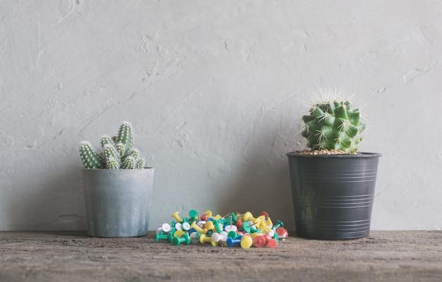 Flor de cactus con alfileres en madera estantes de pared interior moderno y para hacer la lista de antecedentes.