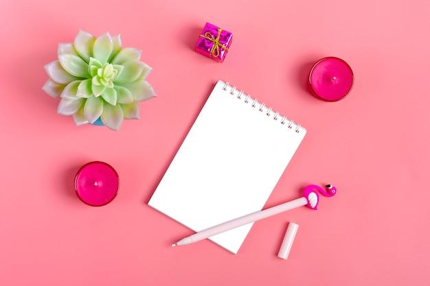Flor casera suculenta sobre fondo rosa