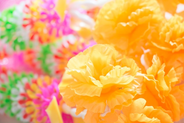Flor dulce y color pastel.