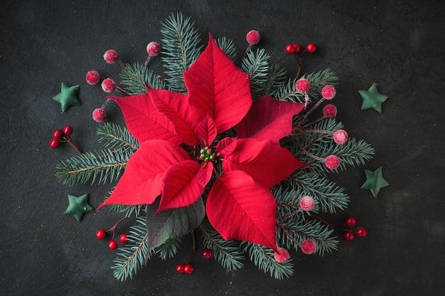 Flor de estrella de navidad, o flor de pascua, y ramas de abeto decoradas, planas en oscuro